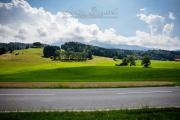 Grand Tour of Switzerland, La Roche