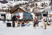 2017-02-11--Schlittenhunderennen-Lenk-118