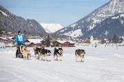 2017-02-11--Schlittenhunderennen-Lenk-020
