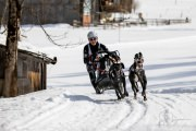 2017-02-11--Schlittenhunderennen-Lenk-075
