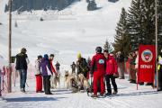 Schlittenhunderennen Les Mosses 2016 - 033