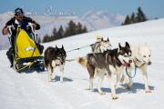 Schlittenhunderennen Les Mosses 2016 - 062