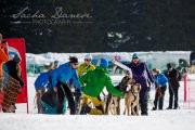 Schlittenhunderennen Les Mosses 2016 - 015