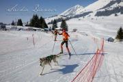Schlittenhunderennen Les Mosses 2016 - 020