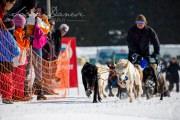 Schlittenhunderennen Les Mosses 2016 - 023