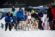 Schlittenhunderennen Les Mosses 2016 - 025