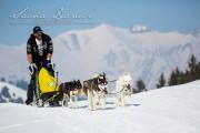 Schlittenhunderennen Les Mosses 2016 - 061
