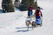 Schlittenhunderennen Les Mosses 2016 - 065