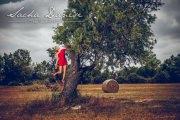 fotowoche_mallorca-strohfeld_mit_mohn-02.jpg