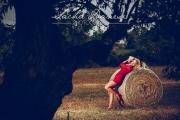 fotowoche_mallorca-strohfeld_mit_mohn-12.jpg